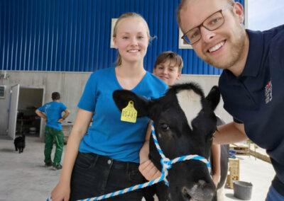 Holsteiner-Kalb mit Familienanschluss, Milchviehbetrieb