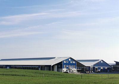 Ansicht neuer Milchviehstall Möck Milch, Milchviehbetrieb