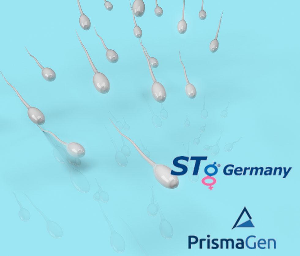 EU-Samendepot und Spermavertrieb für STg Germany / prismagen