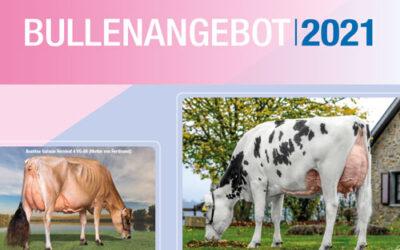 Bullenangebot 2021